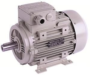 Трехфазный электродвигатель ELK 2EG200L2A-30кВт-3000об/мин